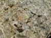 Granates