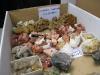 Minerales para el intercambio